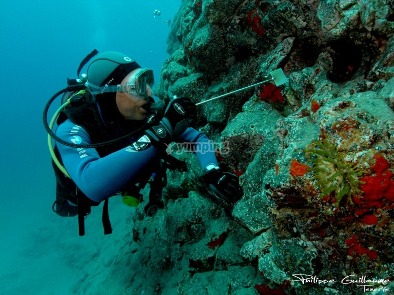 Buzo experto por las playas de Formentera
