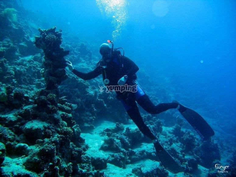 Buceando por las profundidades de Formentera