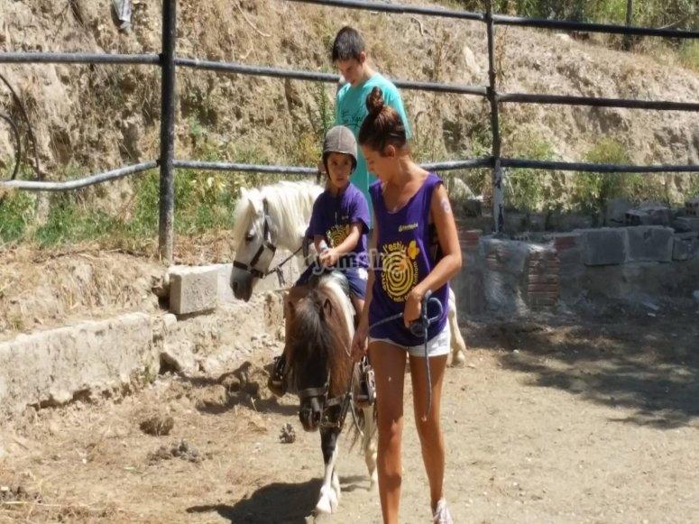 Clase de monta de caballo en pony en Barcelona