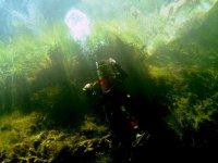 实践barranquismo在瓜达拉哈拉盆地潜水