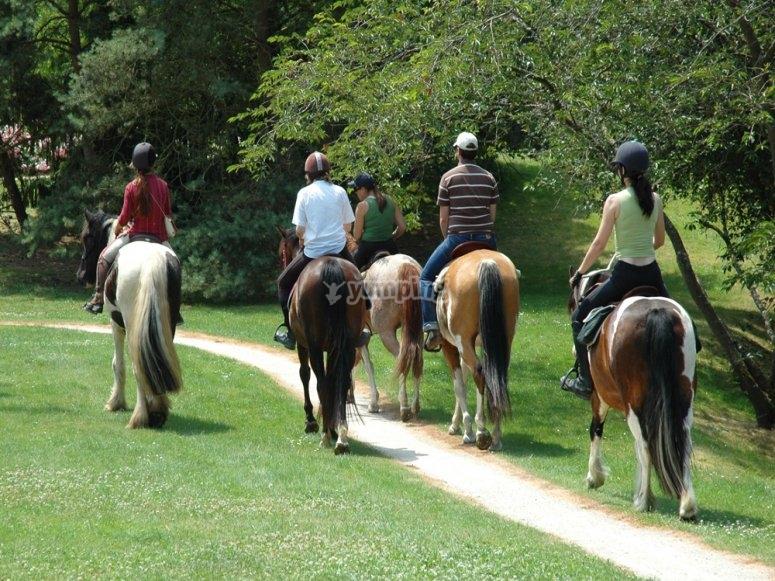 Ruta guiada a caballo por la sierra malagueña