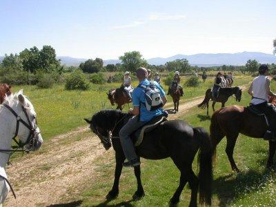 Ruta a caballo zona sur del Torcal de Antequera 1h