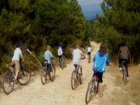Bicicletas en el campo