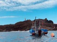 乘船游览Cliff Los Gigantes 1小时30分钟