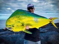 Pez de colores pescado en Lanzarote