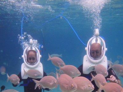 在兰萨罗特岛潜水45分钟