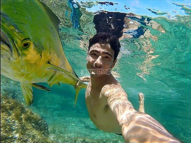 Nadando con una especie autóctona
