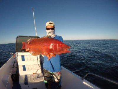 在兰萨罗特岛钓鱼一天8小时