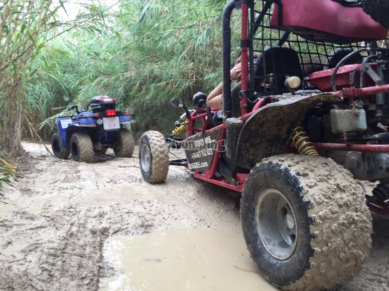 Buggy route along the trails