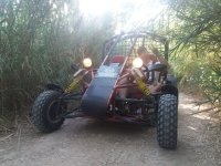 Buggy crossing the forest