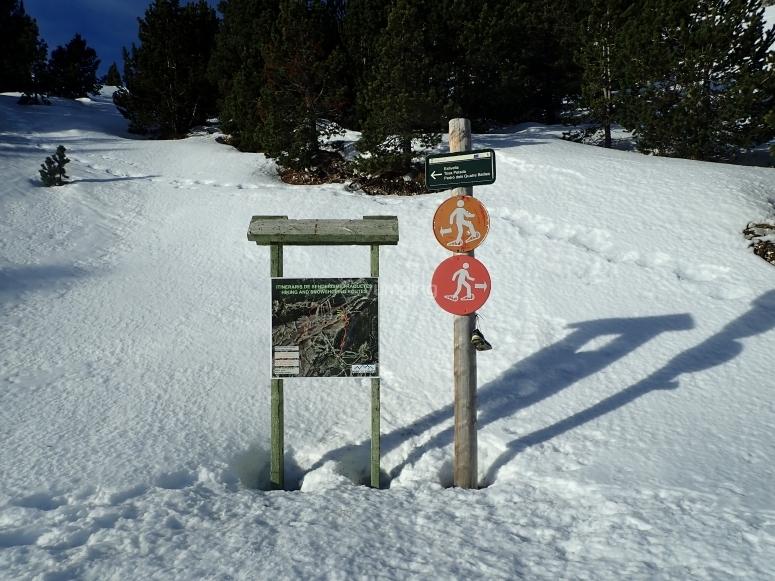 Sendero para actividad en la nieve
