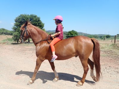 Clases de equitación en Castellar del Vallés 1h
