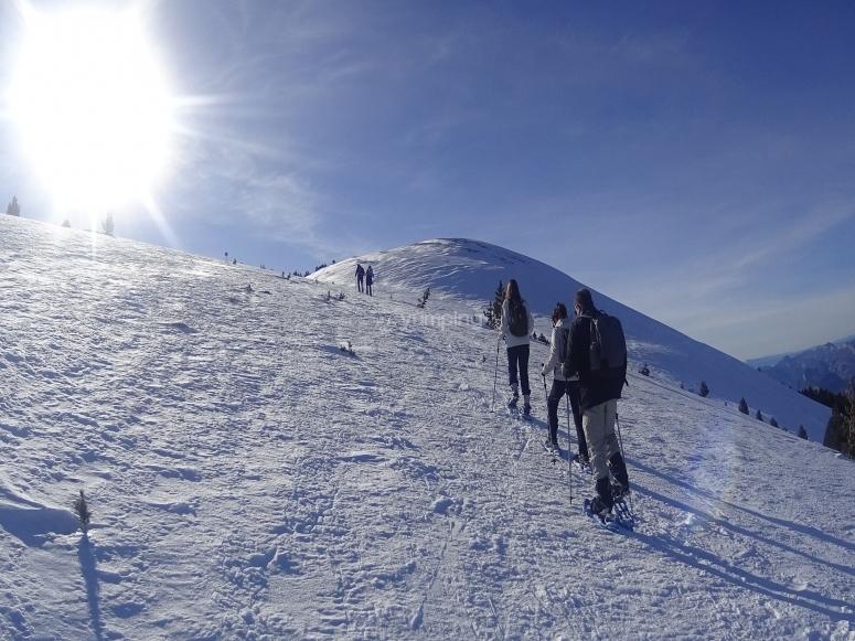 Ruta con raquetas de nieve en día soleado