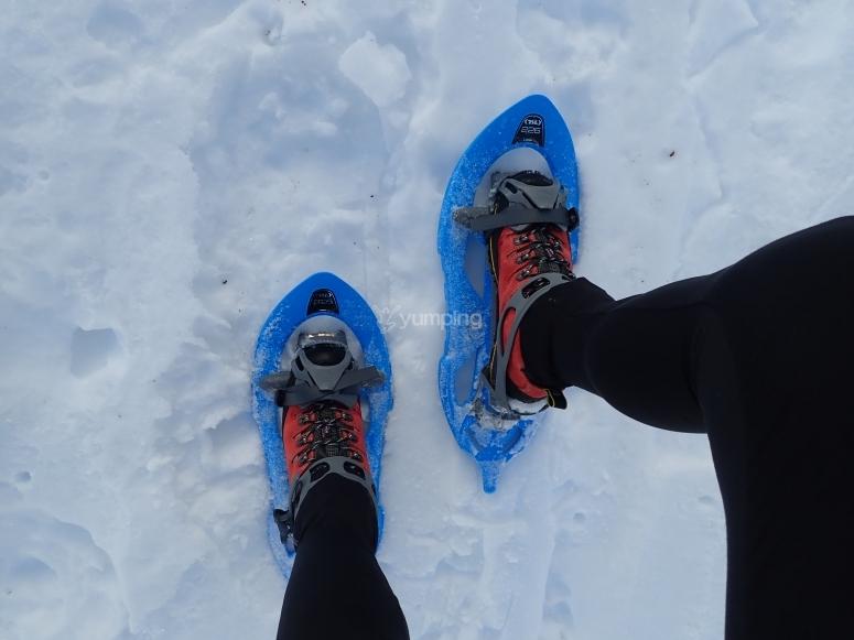 Caminando con las raquetas de nieve
