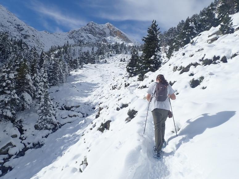Siguiendo el camino con las raquetas de nieve