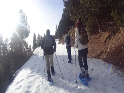 Round snowshoeing route in Port del Comte 8h