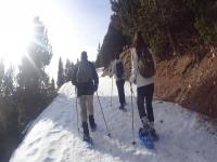 Ruta circular raquetas de nieve Port del Comte 8h