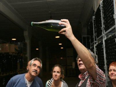 在巴塞罗那品尝卡瓦酒和导游