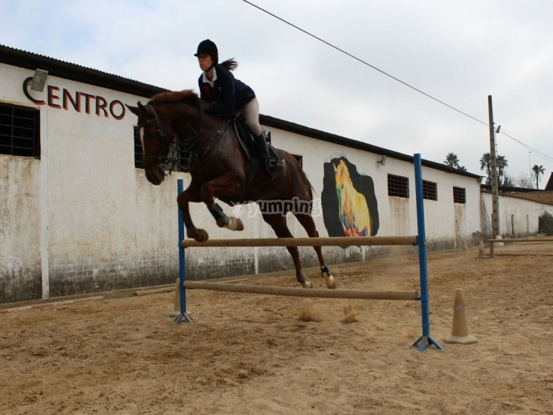 Horse riding center in San Juan de Aznalfarache