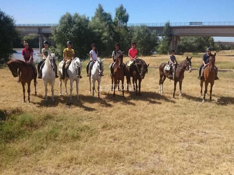 Horse riding class for groups