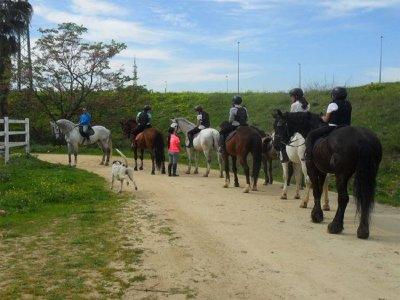 Cumpleaños y ruta a caballo en Sevilla