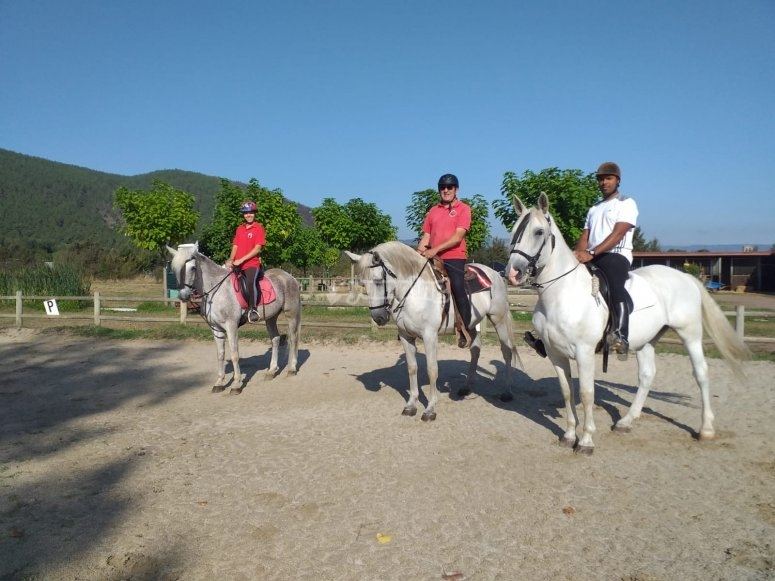 Riders on the back of their horses