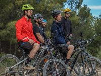 Salida en bicicleta eléctrica por Granada