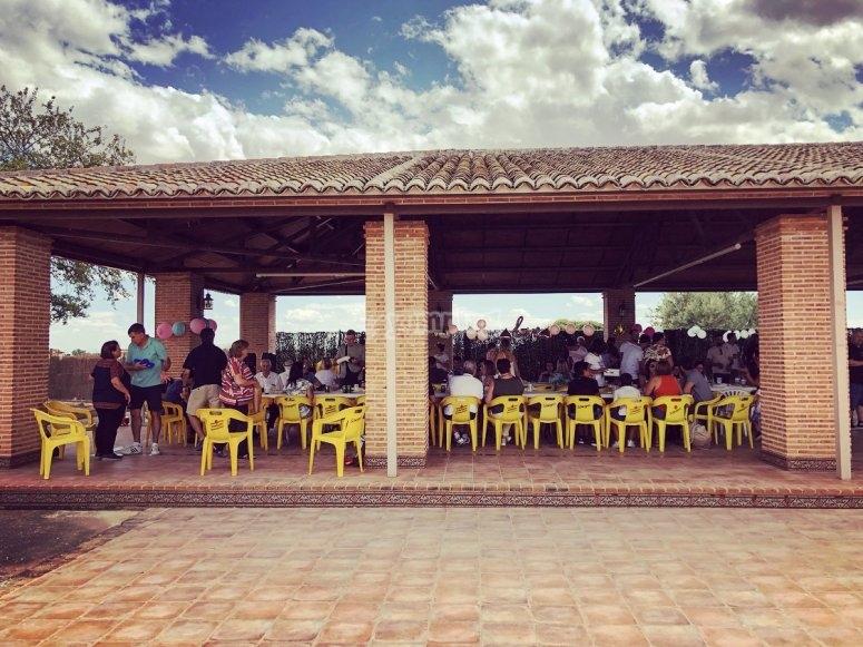 Campo de Criptana农场内部