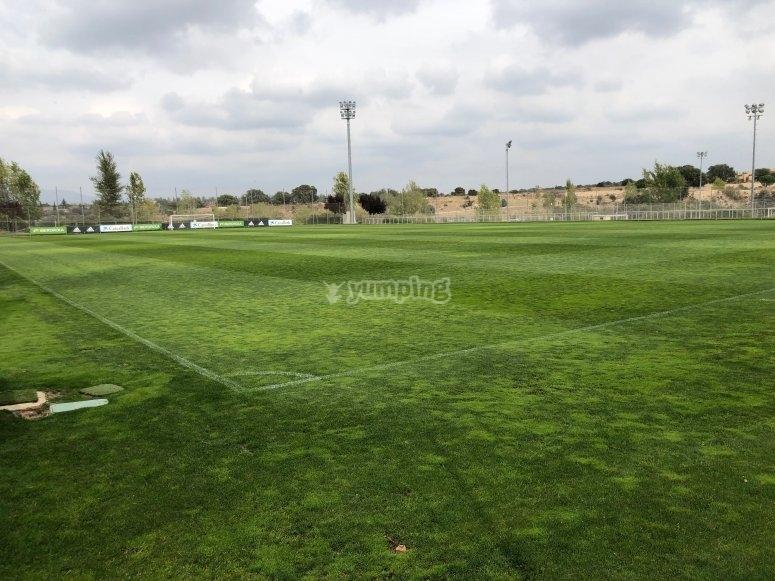 Vista panoramica del campo dalla linea d'angolo