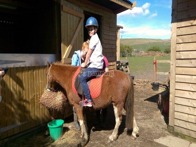 在科尔梅纳尔(Colmenar)骑小马的孩子