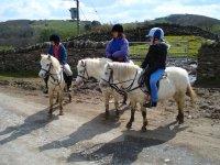Paseo en pony en finca de Madrid 30 min