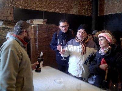 Visita y cata en bodega artesanal en Montiel