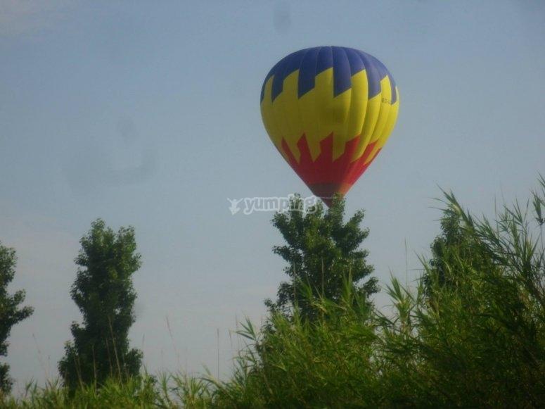 Sobrevolar en globo bosques de Cerdanya