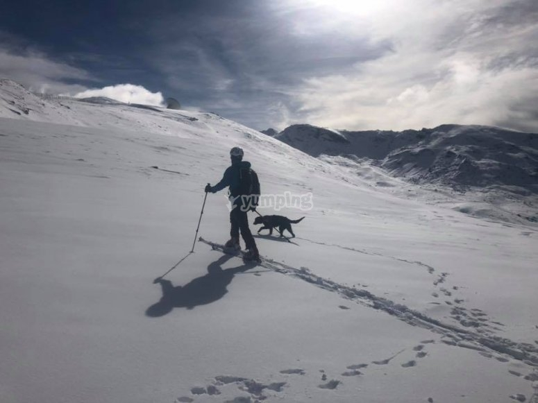 A day of skiiing in good company in Sierra Nevada