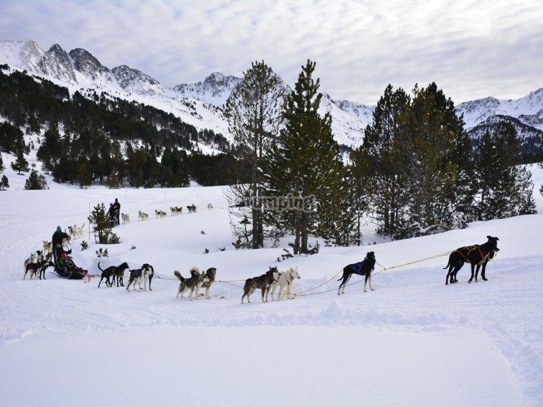 Fila de trineos de nieve en Grau Roig
