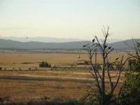 Landscape for donkey ride