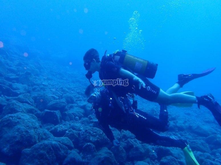 首先在圣克鲁斯-德特内里费岛潜水