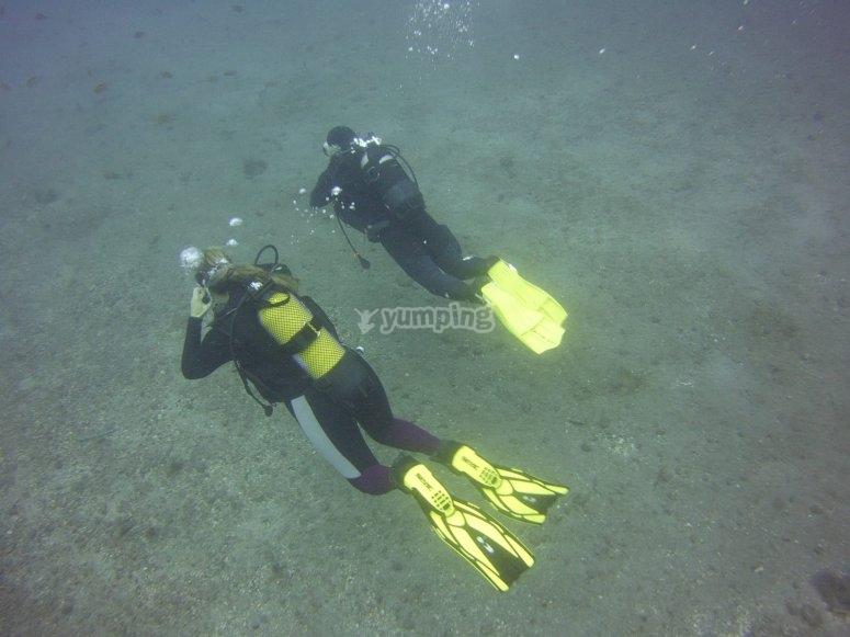 在加那利海岸潜水