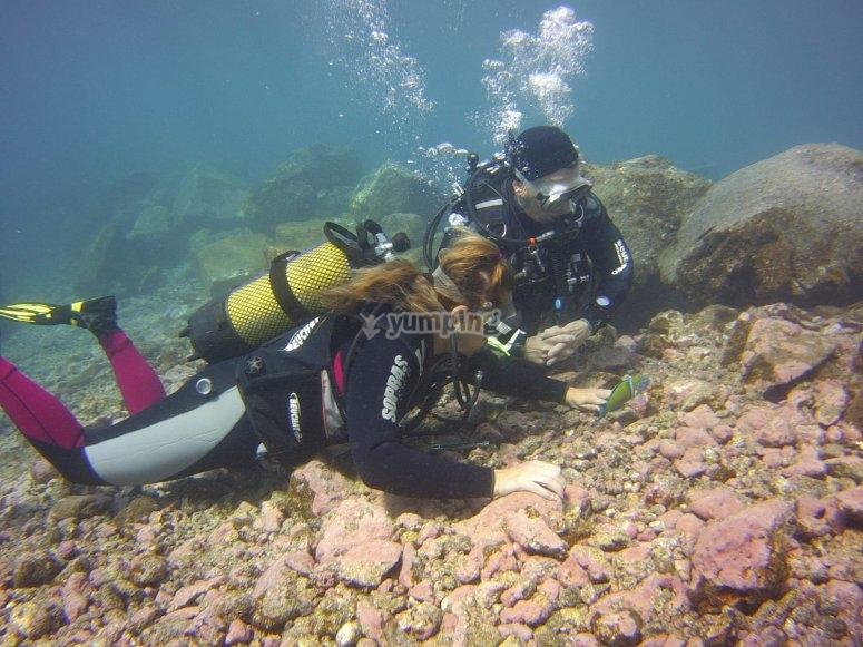 在特内里费岛初学者潜水