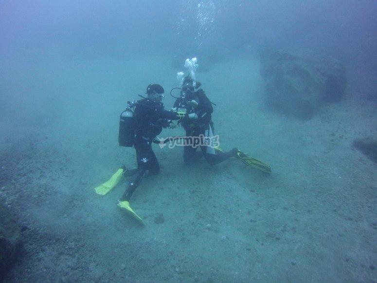 特内里费岛的潜水实践