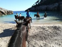 Horse ride Cala Fustam for 2 and a half hours