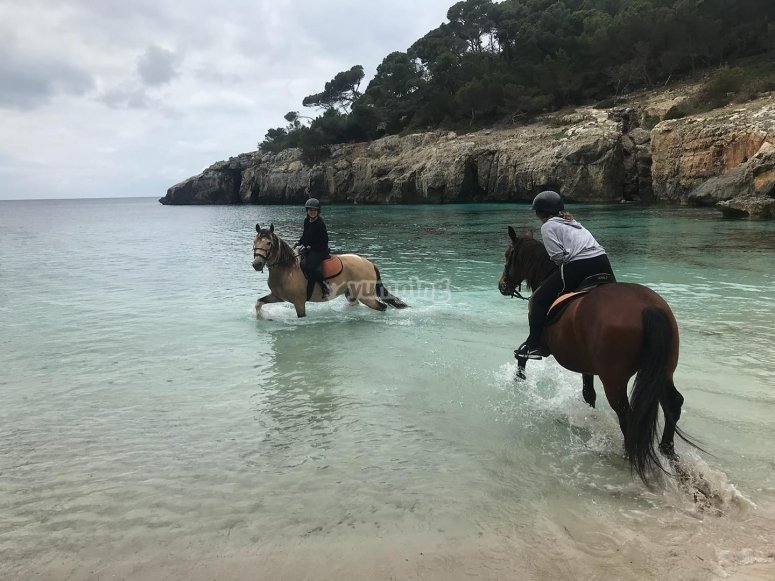 Family outing by horse south of Menorca