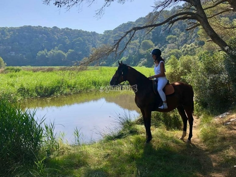 Sendero sur Menorca a caballo
