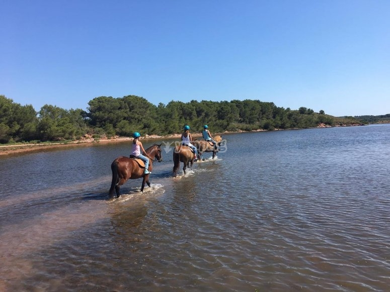 Horseback riding through the coves of Menorca