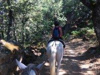 Paseo a caballo Cabezabellosa