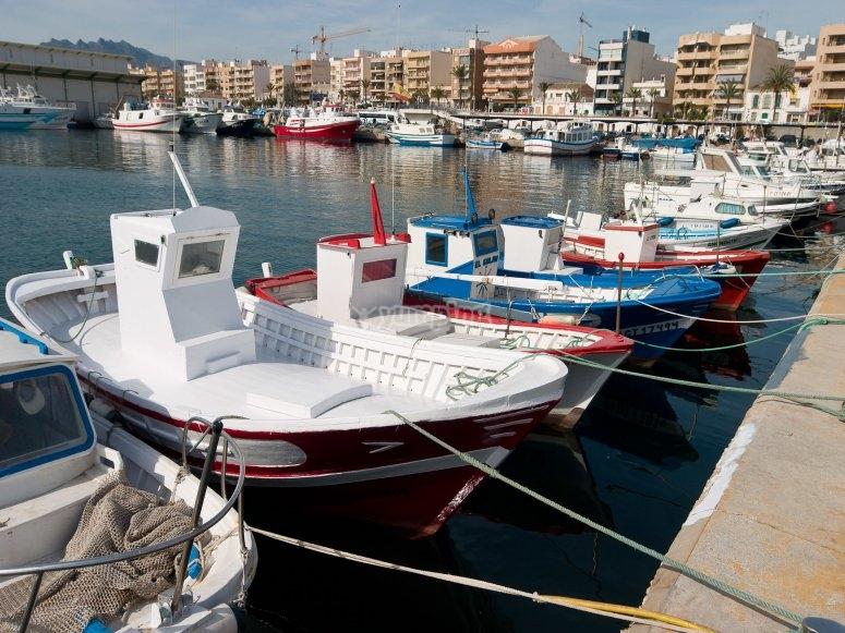 Barche attraccate nel porto di Garrucha