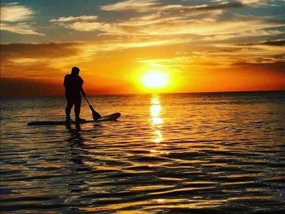 Percorso di paddle surf di 1 ora all'alba Spiaggia di Mil Palmeras