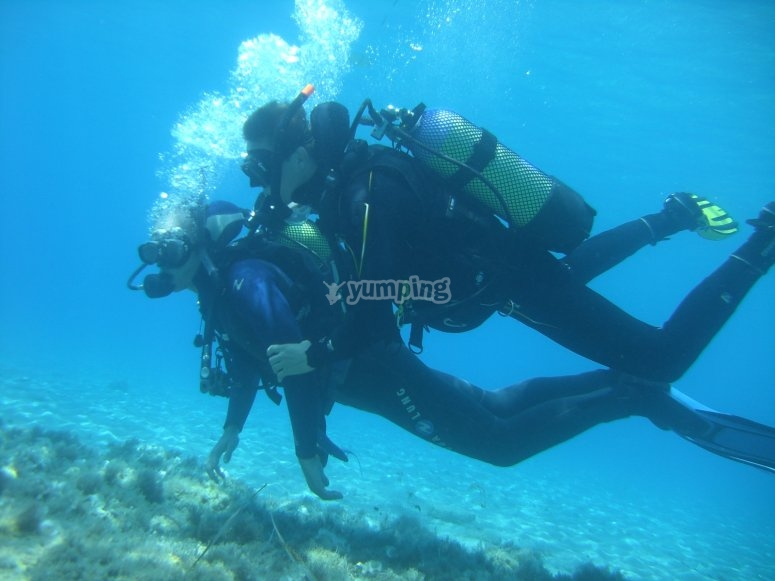 Diver dando claves en sesión de buceo en Tenerife