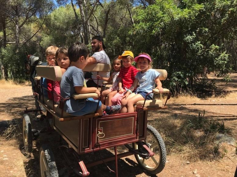 Paseo en carromato en el Parque Pinar de Nagüeles
