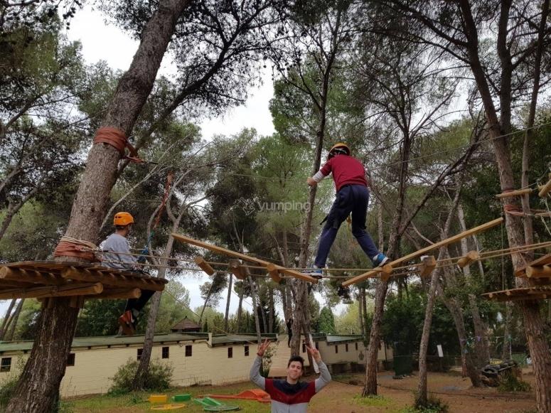 Circuito de tirolinas en los árboles por el Parque Pinar de Nagüeles